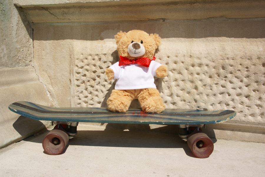 DSC08478-Basil-on-skateboard-900.jpg